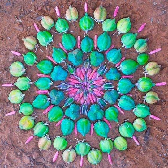 Beautiful Flower Mandala