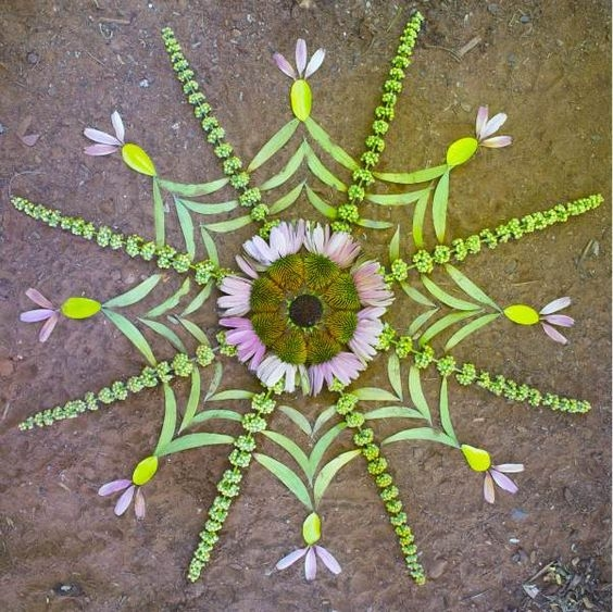 Beautiful Flower Mandalas